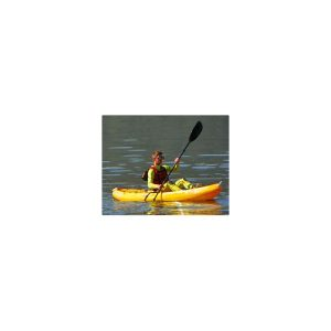 fish-1-kayak